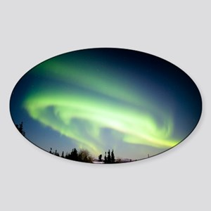 Aurora borealis in Alaska - Sticker (Oval)