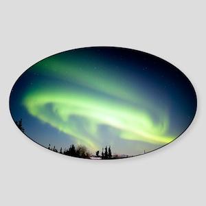 Aurora borealis in Alaska - Sticker (Oval)
