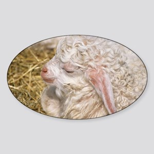 Angora goat kid - Sticker (Oval)