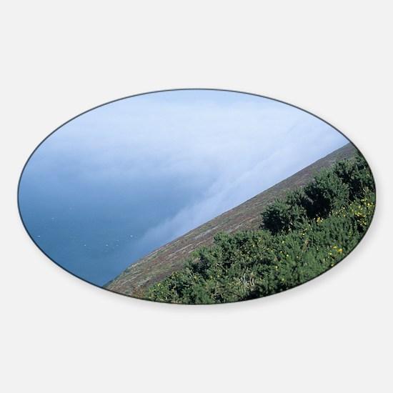 Coastal mist - Sticker (Oval)