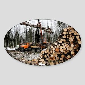 Logging - Sticker (Oval)