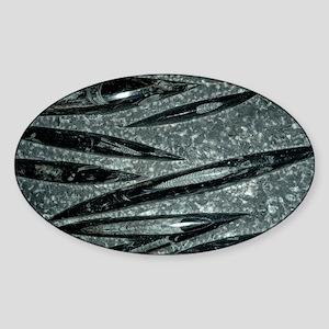 Orthoceras fossils - Sticker (Oval)