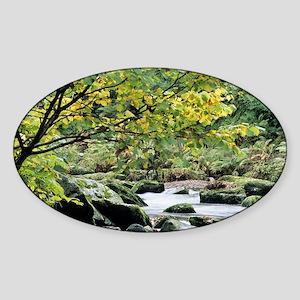 Stream - Sticker (Oval)