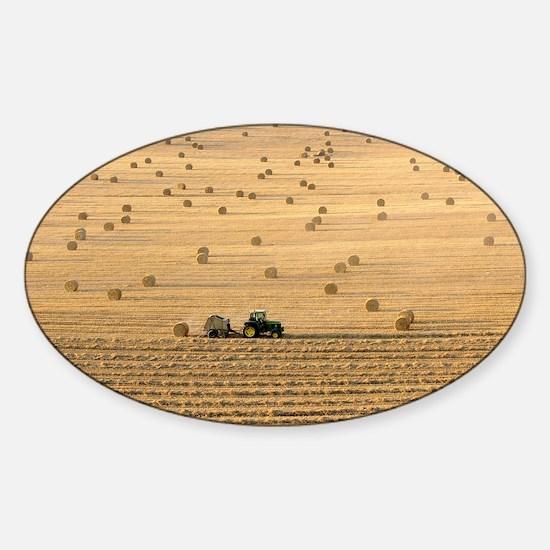 Tractor harvesting straw - Sticker (Oval)
