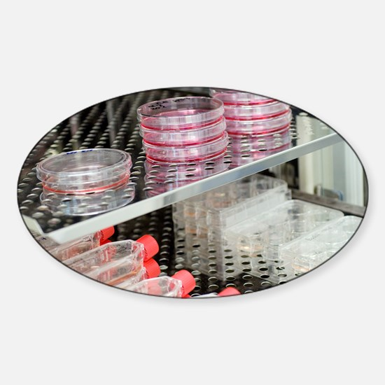 Cell cultures - Sticker (Oval)