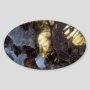 Stony-iron meteorite - Sticker (Oval)