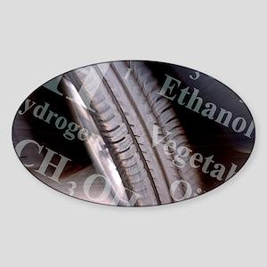 Alternative fuels - Sticker (Oval)