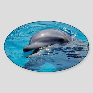 Bottlenose dolphin - Sticker (Oval)