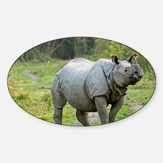 Indian rhinoceros - Sticker (Oval)