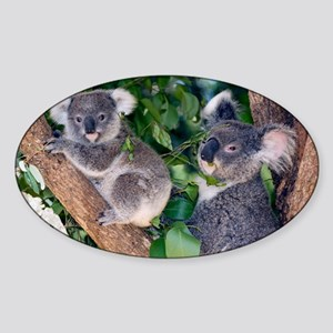 Mother koala and young - Sticker (Oval)