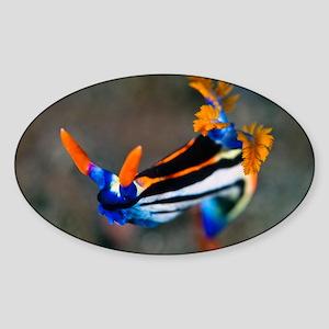 Nudibranch - Sticker (Oval)