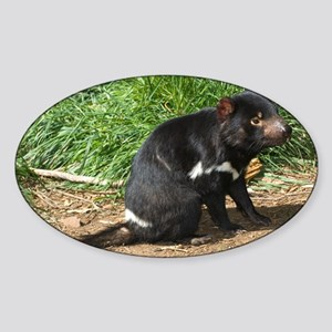 Tasmanian devil - Sticker (Oval)