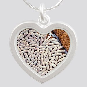 E coli bacteria, SEM - Silver Heart Necklace