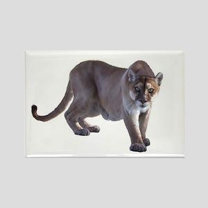 Stalking Cougar Rectangle Magnet