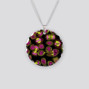 Mitosis, light micrograph - Necklace Circle Charm