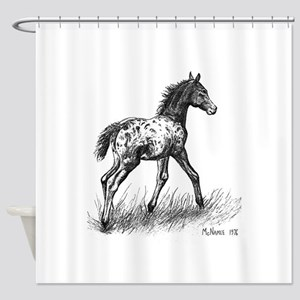 Appaloosa Foal Shower Curtain