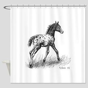 Appaloosa Foal Shower Curtain