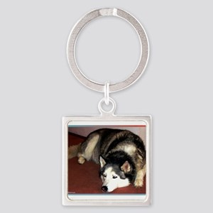 Husky! Dog photo! Square Keychain
