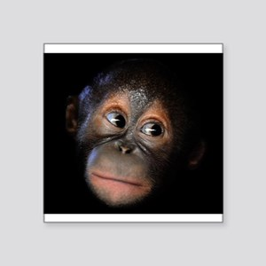 "Baby Orangutan Face Square Sticker 3"" x 3"""