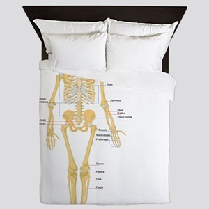 Skeleton chart Queen Duvet