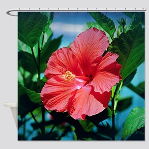 Caribbean Flower Shower Curtain