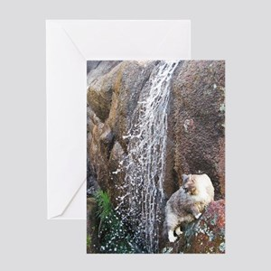Cat in a Waterfall Greeting Card