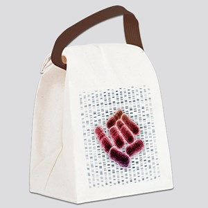 E coli bacteria, artwork - Canvas Lunch Bag