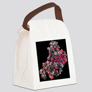 model - Canvas Lunch Bag