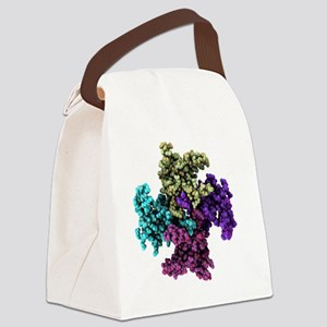 ins - Canvas Lunch Bag