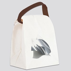 Molybdenum - Canvas Lunch Bag