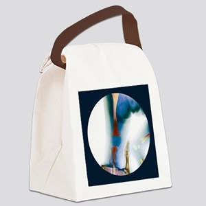 ay - Canvas Lunch Bag