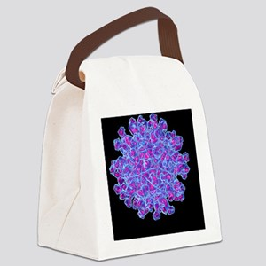 Foot-and-mouth disease virus - Canvas Lunch Bag