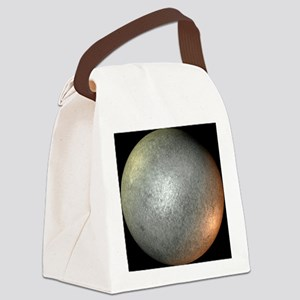 Ceres - Canvas Lunch Bag
