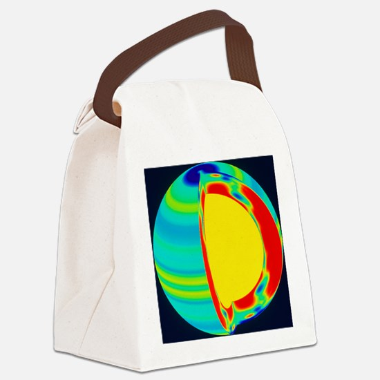 ion rate with depth - Canvas Lunch Bag