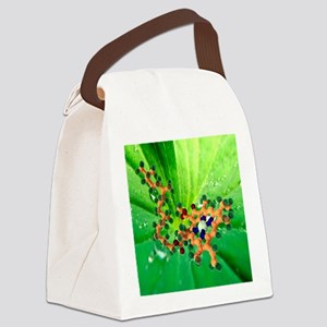 Chlorophyll molecule - Canvas Lunch Bag