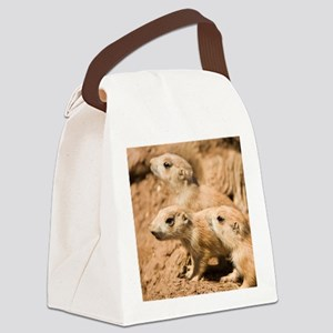Black-tailed prairie dogs - Canvas Lunch Bag