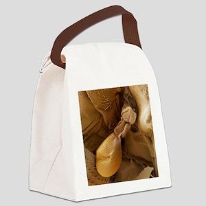 Fruit fly balance organ, SEM - Canvas Lunch Bag