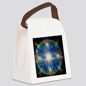 photo - Canvas Lunch Bag
