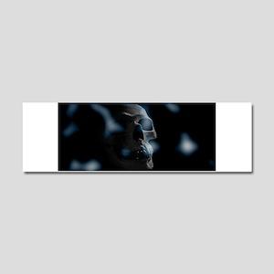 blue skull Car Magnet 10 x 3