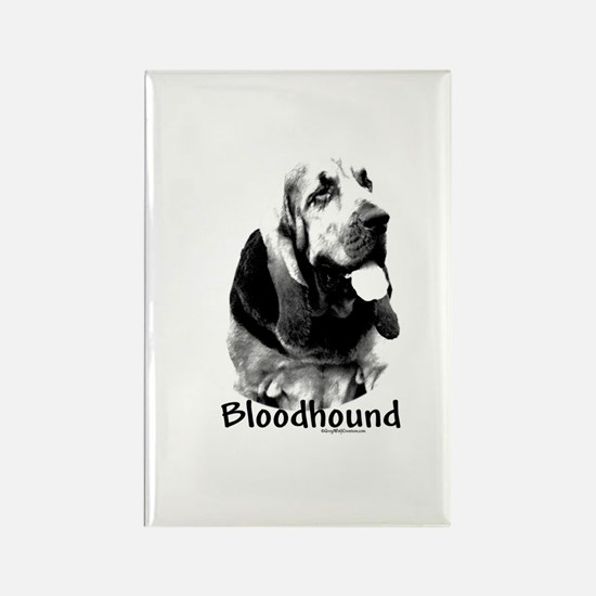 Bloodhound Charcoal Rectangle Magnet