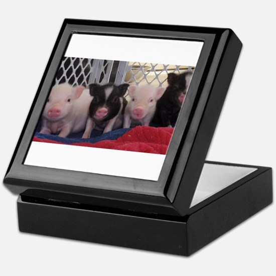Baby piggies Keepsake Box