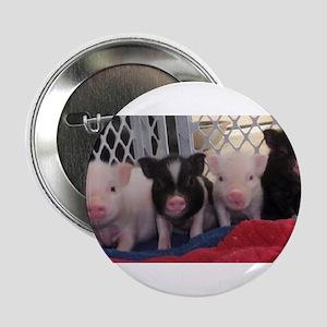 """Baby piggies 2.25"""" Button"""