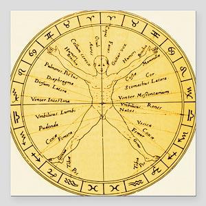 Astrological anatomy - Square Car Magnet 3