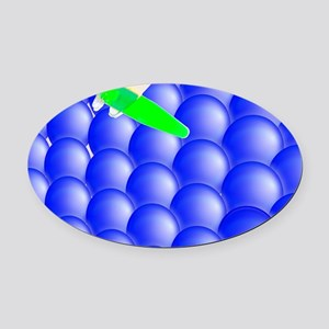 Nano-science, conceptual image - Oval Car Magnet