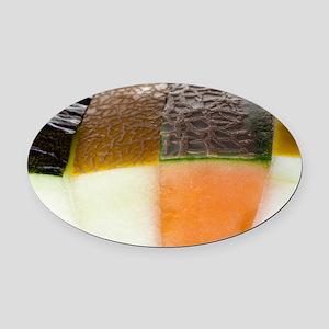 Melon slices - Oval Car Magnet