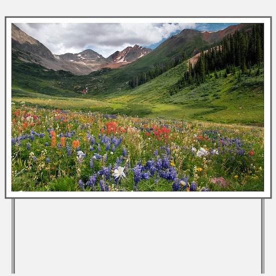 Alpine flowers in Rustler's Gulch - Yard Sign