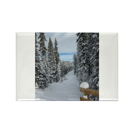 Frosty Forest Rectangle Magnet