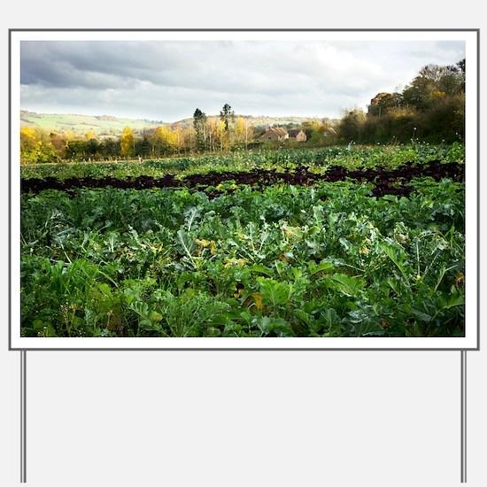 Organic farming - Yard Sign
