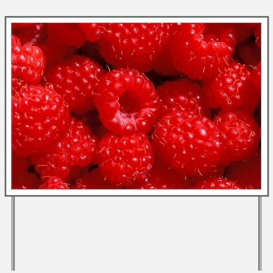Raspberries - Yard Sign