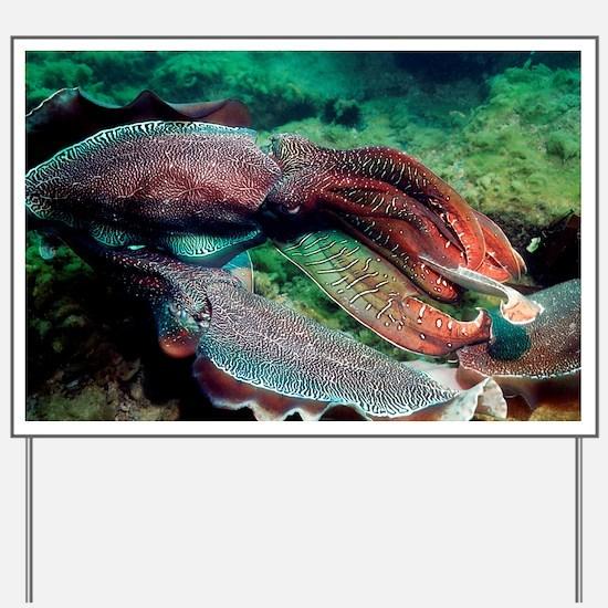 Giant cuttlefish - Yard Sign